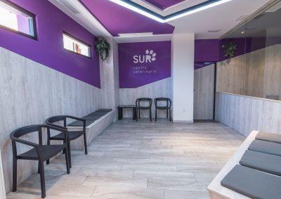 Sala de espera del Centro Veterinario Sur